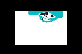 Logo-site_AL-1